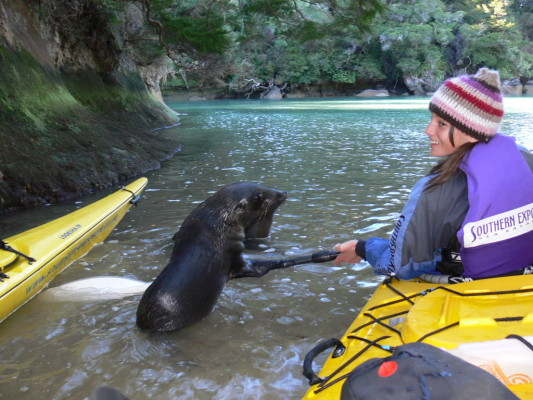 Tarn and a fur seal friend